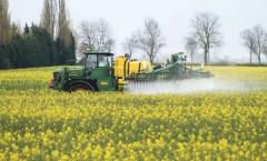 Spraying Prosaro & Amistar onto oil seed rape in flower with new John Deere 5430 36m sprayer